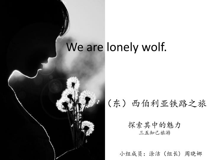 we are lonely wolf n.