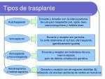 tipos de trasplante1