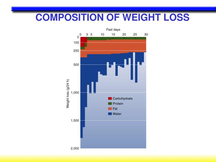 COMPOSITION OF WEIGHT LOSS
