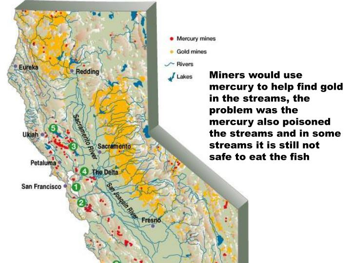 Miners would use mercury to help find gold in the streams, the problem was the mercury also poisoned the streams and in some streams it is still not safe to eat the fish