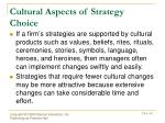 cultural aspects of strategy choice1