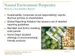 natural environment perspective what is a sustainability report