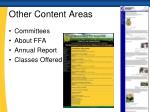 other content areas