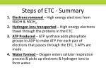 steps of etc summary