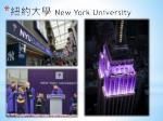 new york university1