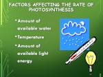 factors affecting the rate of photosynthesis