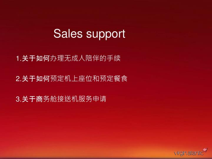 sales support n.