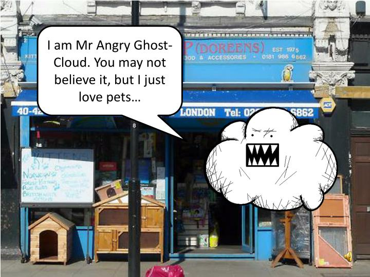 I am Mr Angry Ghost-Cloud. You may not believe it, but I just love pets…