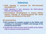 inference1