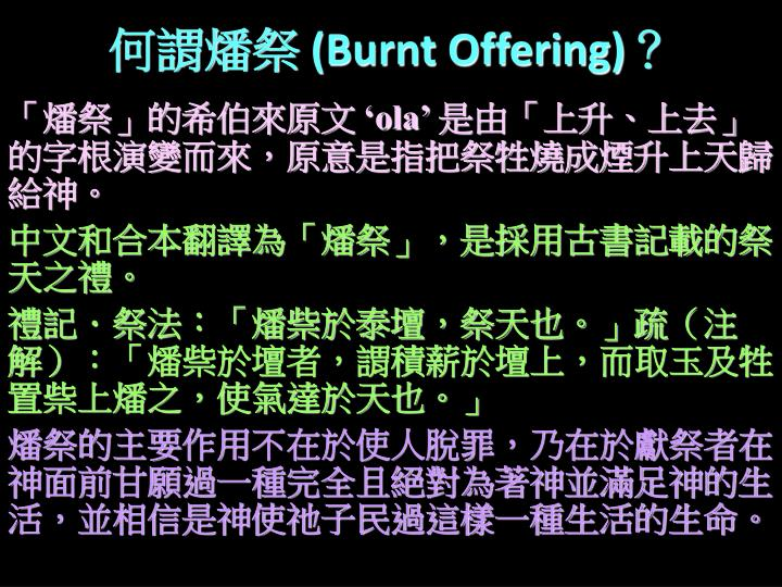 burnt offering n.
