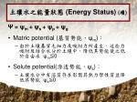 energy status3
