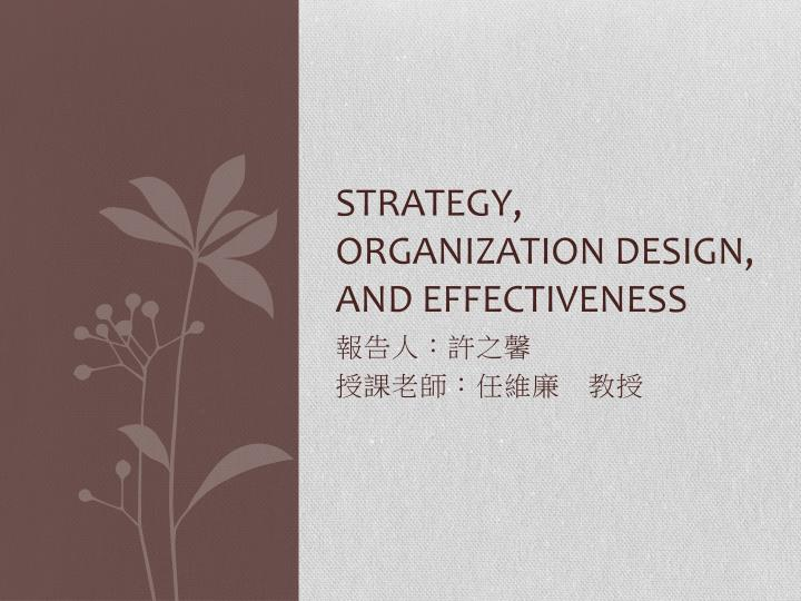 strategy organization design and effectiveness n.