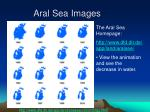 aral sea images