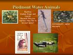 piedmont water animals
