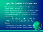 specific factors production