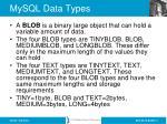 mysql data types3