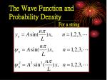 the wave function and probability density