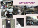 why anti rural