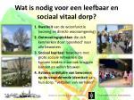 wat is nodig voor een leefbaar en sociaal vitaal dorp