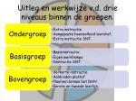 uitleg en werkwijze v d drie niveaus binnen de groepen
