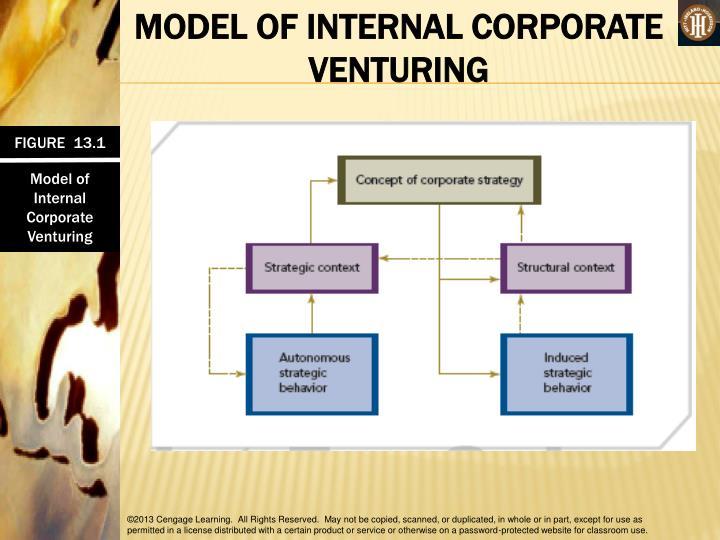 MODEL OF INTERNAL CORPORATE VENTURING