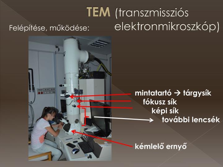 Tem transzmisszi s elektronmikroszk p