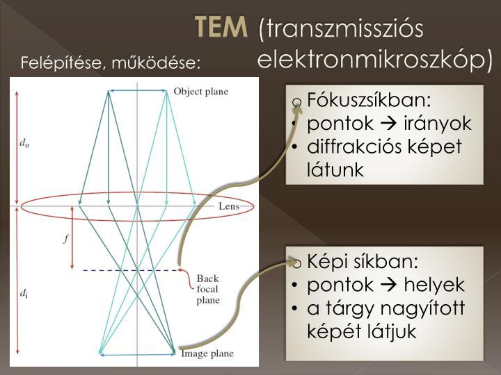 Tem transzmisszi s elektronmikroszk p1