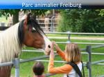 parc animalier freiburg2