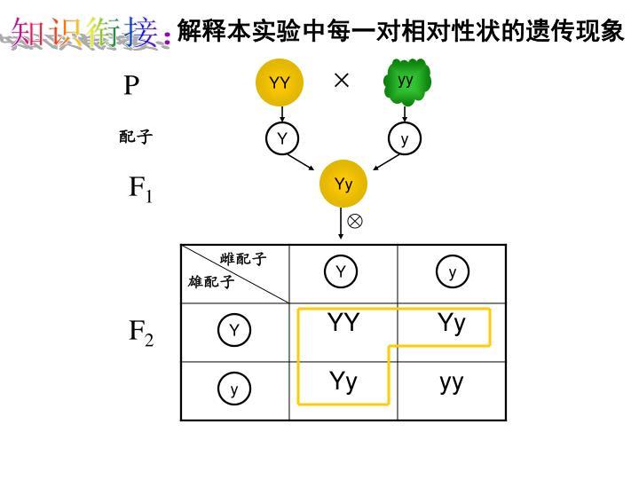解释本实验中每一对相对性状的遗传现象