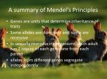 a summary of mendel s principles