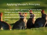 applying mendel s principles