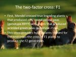 the two factor cross f1