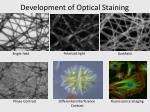 development of optical staining