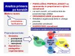 analiza primera po korakih