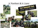 jr panthers jr lions