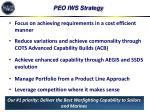 peo iws strategy