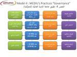 model 4 mediu s practices governance 42