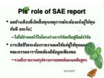 pis role of sae report