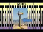 week 3