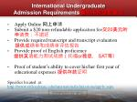 international undergraduate admission requirements