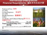 international undergraduate financial requirements