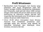 profil wisatawan