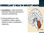 cerebellum s role in implicit memory