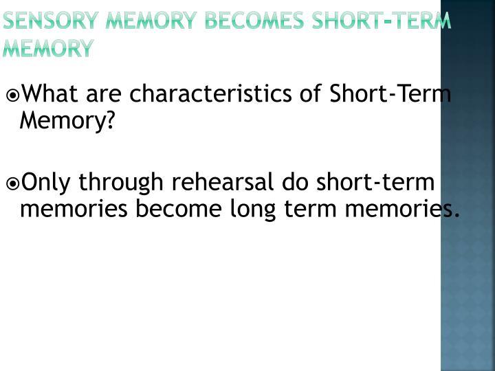 Sensory Memory Becomes Short-Term Memory