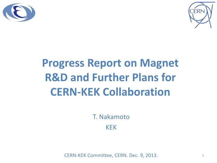 progress report on magnet r d and further plans for cern kek collaboration n.