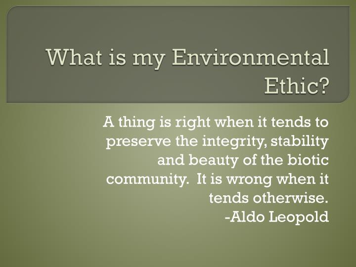 what is my environmental ethic n.