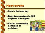 heat stroke1