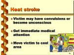 heat stroke2