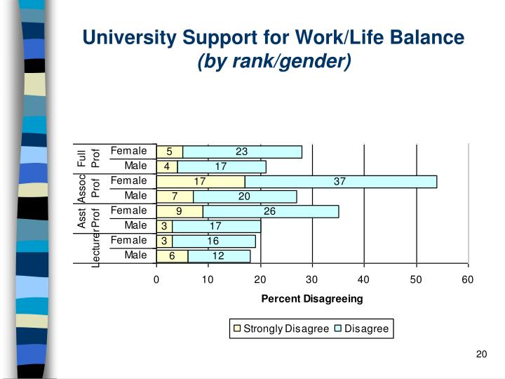 University Support for Work/Life Balance