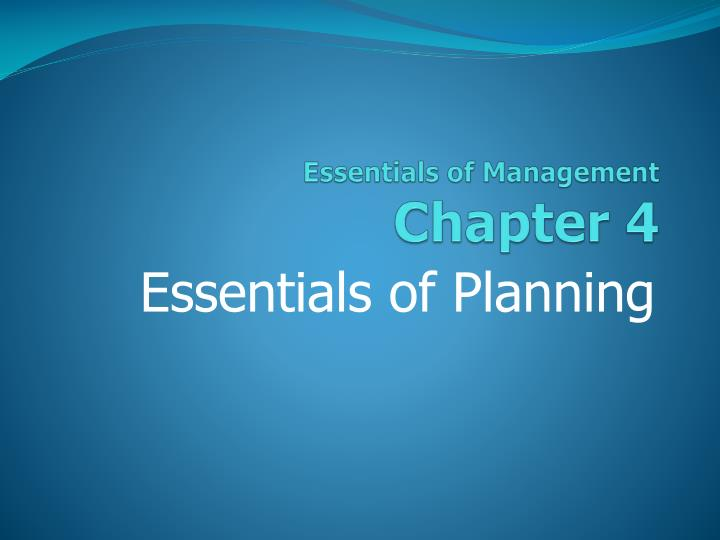 essentials of management chapter 4 n.